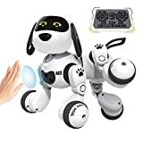 DEERC Robot de juguete para perros con control remoto para niños Robot RC inteligente programable con detección de gestos, kit robótico con ojos LED, caminar, hablar, cantar, bailar, regalo interactivo para niños y niñas