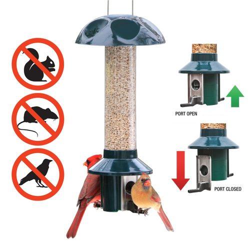 Roamwild PestOff Alimentador de alimentación a prueba de ardillas Semillas mixtas Semillas de girasol Versión en forma de ardilla A prueba de carpetas de aves