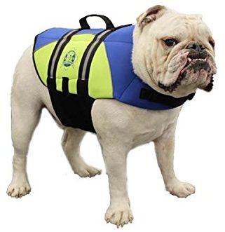 Paws Aboard BY1400 Chaleco salvavidas de neopreno para perros
