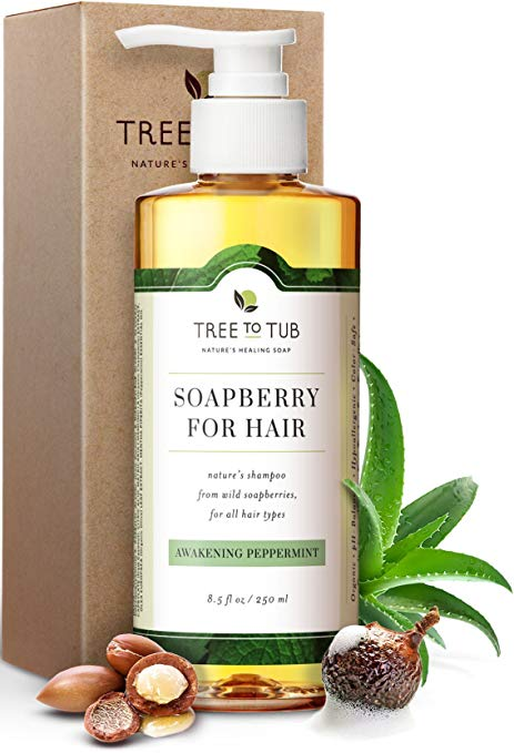 Champú de argán orgánico para cabello graso