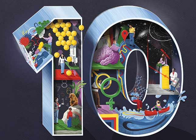 Contacto los 10 art culos m s vendidos de cada producto - Articulos mas vendidos ...
