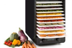Los 10 deshidratadores de alimentos más vendidos